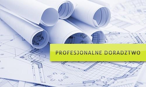 profesjonalne-doradztwo